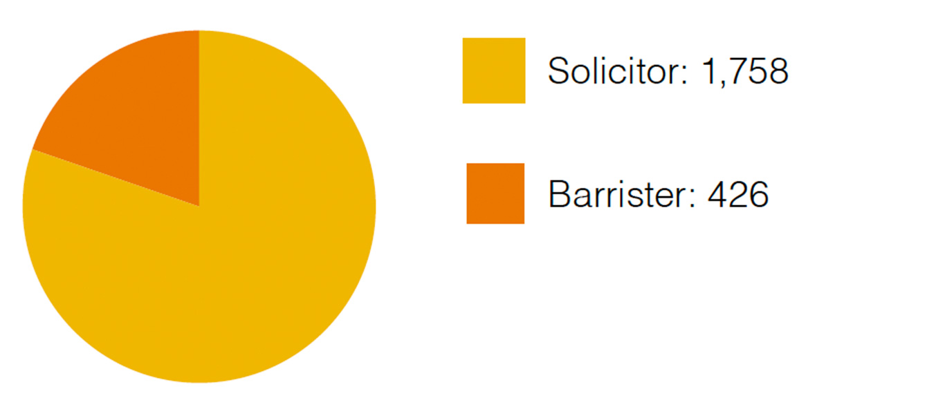 Panel lawyers by type